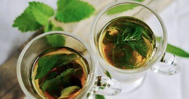 Doenças e ervas medicinais - Medicina Popular