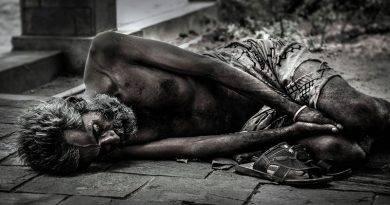O Divino Pobrezinho ou o Lavrador da Arada