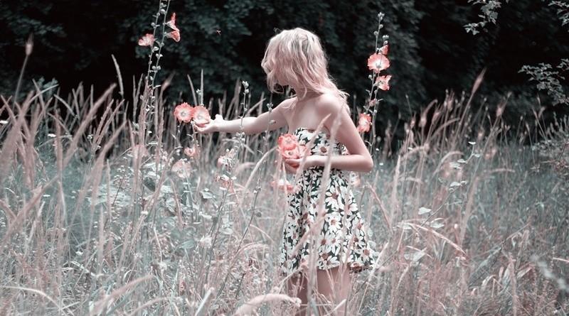Plantas e ervas medicinais – usos cosméticos e outros
