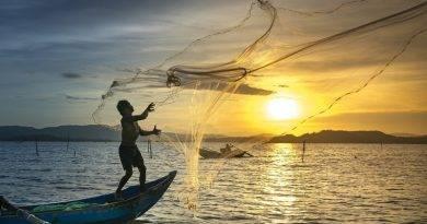 Adágios e provérbios sobre a pesca e o pescador