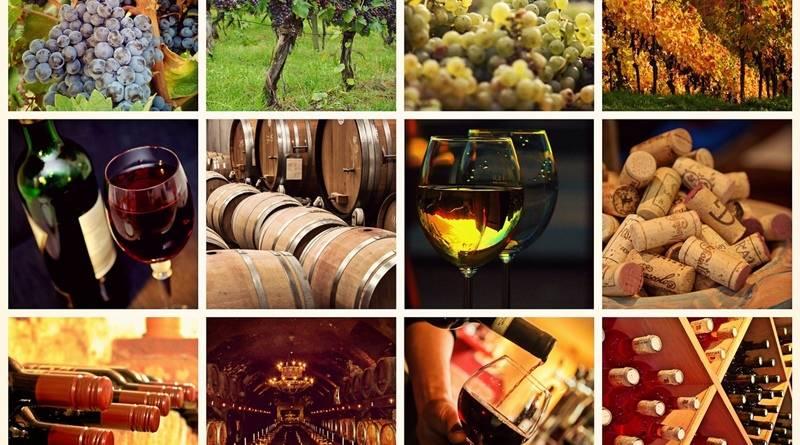 Provérbios sobre o vinho, recolhidos na região de Trás-os-Montes e Alto Douro