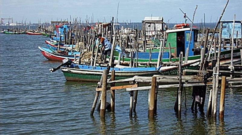 Carrasqueira: o maior porto palafítico da Europa