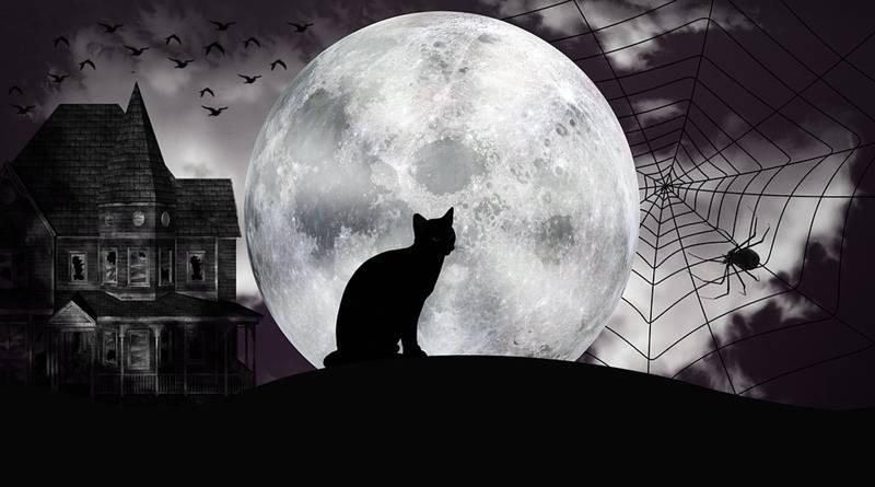 Crenças Sobrenaturais Saloias   Superstições e Crendices   Gato preto e Lua Cheia