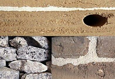 A arquitectura e a engenharia na criação da casa tradicional