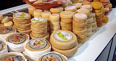 Queijos de Portugal - A cada região os seus queijos