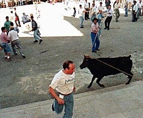 A Vaca das Cordas | Usos, costumes e tradições