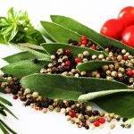 À descoberta das esplêndidas ervas aromáticas