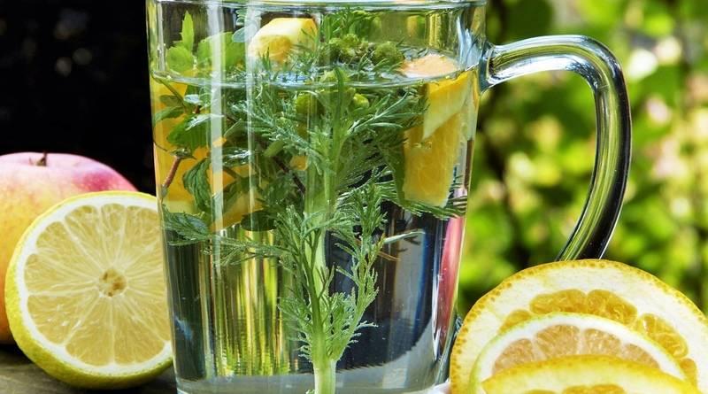 A saúde e as ervas medicinais