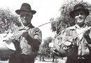 Sarronca, Ronca ou Zamburra   Instrumentos musicais