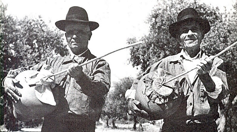 Zamburra, Sarronca ou Ronca | Instrumentos musicais