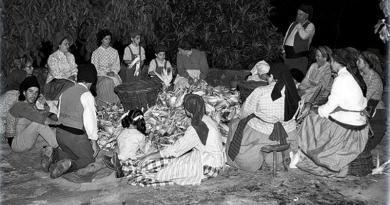 O Folclore e a divisão social do trabalho
