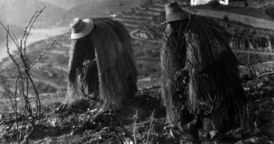 O trabalhador – Usos e costume da região do Douro