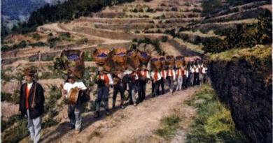 Carregadores dos cestos vindimos no Alto Douro, em fila, a caminho do lagar