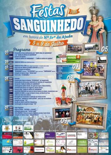 Festa em honra de Nossa Senhora da Ajuda - Sanguinhedo - Mouçós - Vila Real